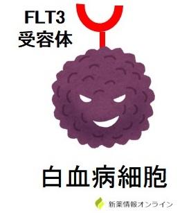 急性骨髄性白血病とFLT3受容体