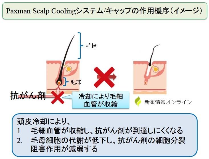 Paxman Scalp Coolingシステム/キャップの作用機序