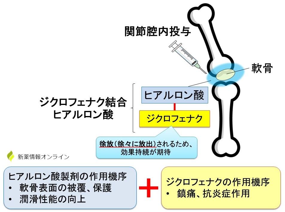 ONO-5704/SI-613(ジクロフェナク結合ヒアルロン酸)の作用機序・特徴
