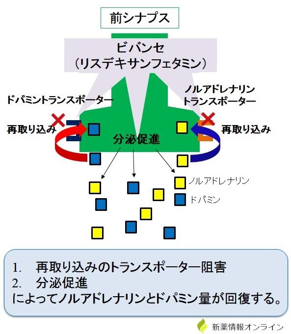 ビバンセ(リスデキサンフェタミン)の作用機序
