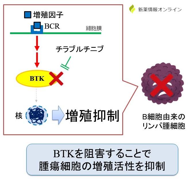チラブルチニブの作用機序:BTK阻害薬