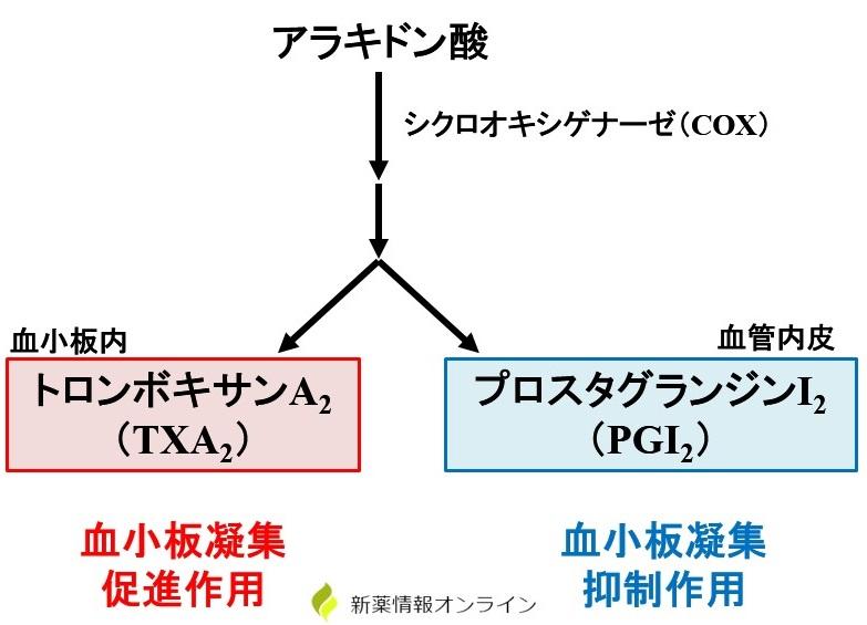 TXA2とPGI2の合成経路