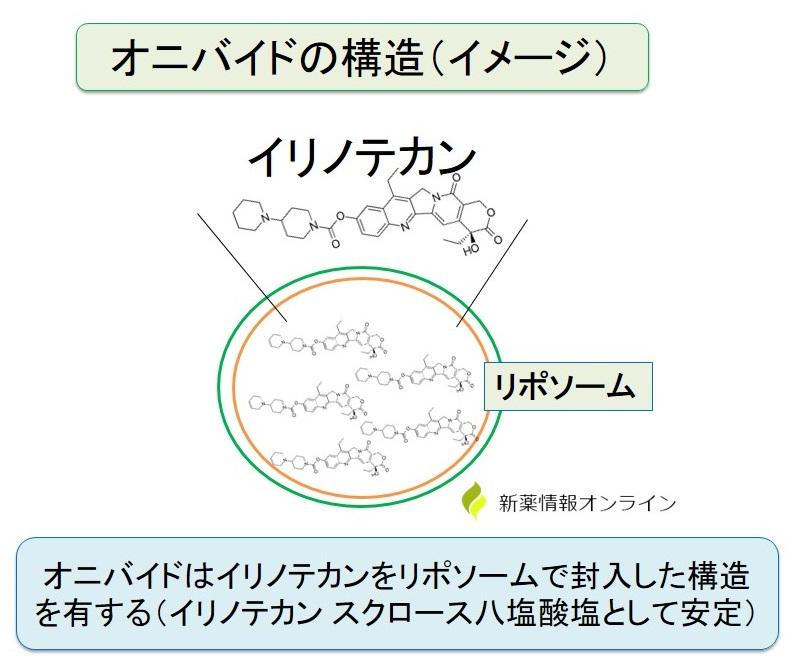 オニバイド(イリノテカン リポソーム製剤)の構造