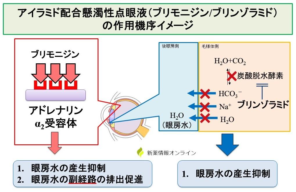 アイラミド配合点眼液(ブリモニジン/ブリンゾラミド)の作用機序:α2作動と炭酸脱水酵素阻害