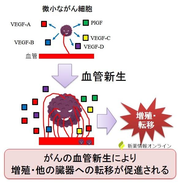 がんと血管新生