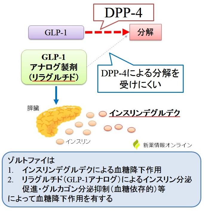 ゾルトファイ(インスリンデグルデク+リラグルチド)の作用機序:BPT(Basal supported post Prandial GLP-1 therapy)
