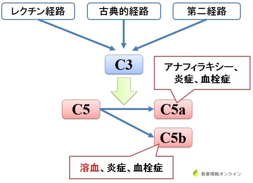 補体活性化経路