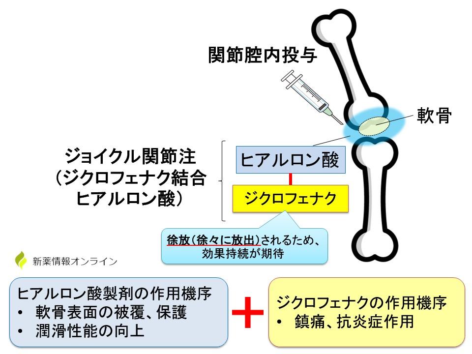 ジョイクル(ジクロフェナク結合ヒアルロン酸)の作用機序・特徴