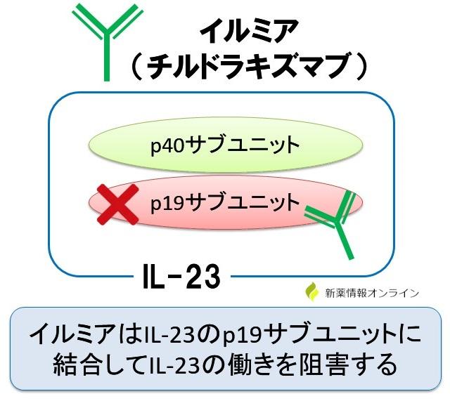イルミア(チルドラキズマブ)の作用機序と特徴