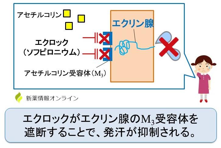 エクロック(ソフピロニウム)の作用機序・特徴