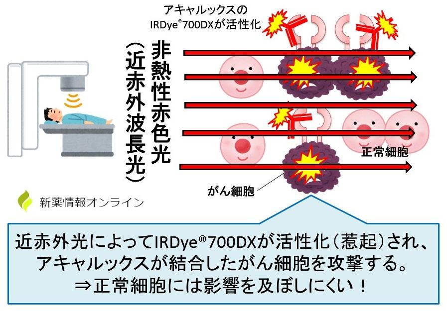 アキャルックス(セツキシマブ サロタロカン)の作用機序:光免疫療法