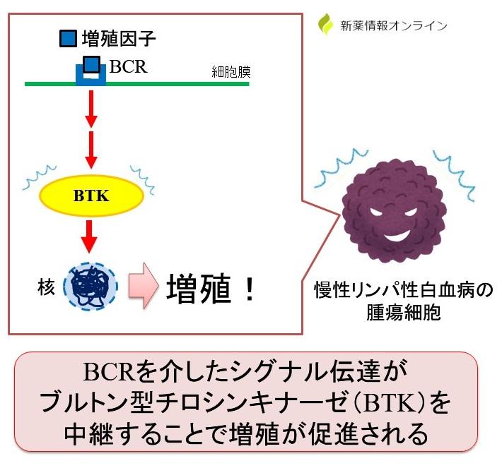 BCRとブルトン型チロシンキナーゼ(BTK)