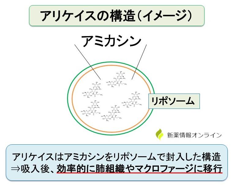 アリケイスの構造:アミカシンをリポソームに封入した吸入剤(ネブライザー使用)