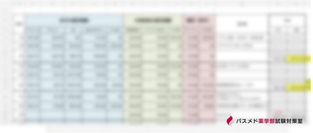 在宅担当薬剤師の管理エクセル(イメージ)